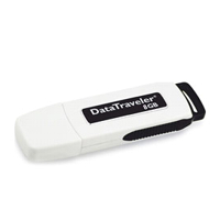 - KINGSTON DataTraveler USB 8GB black